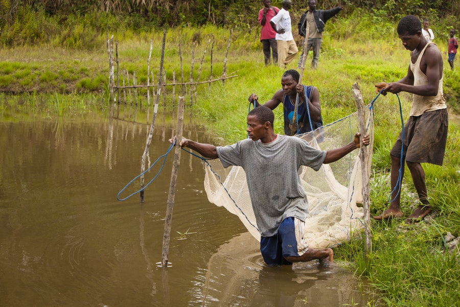 After harvesting the fish, the church shared their catch with everyone in the community regardless of their religion.
